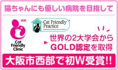 猫ちゃんにも優しい病院を目指して。大阪市西部で初の2大学会からGOLD認定を取得いたしました!