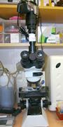 顕微鏡 写真1